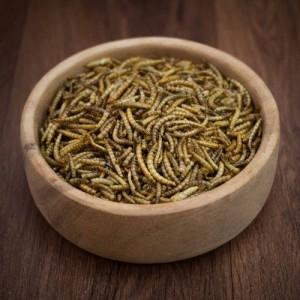 Wild Garden Bird Dried Mealworm