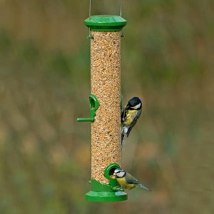 Exclusive Seed Feeder
