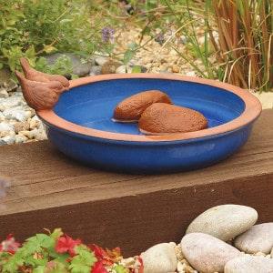 Garden bird bird bath