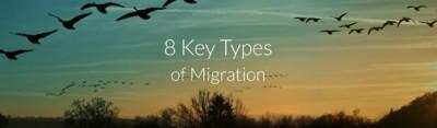 8 Key types of migration