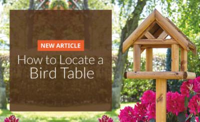 Locating a bird table