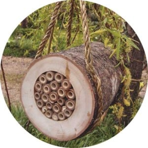 pollinating_bee_log_pbl__round