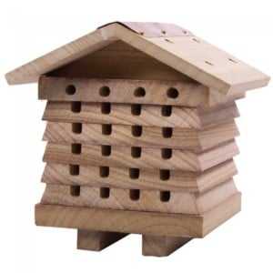 wildlife_world_solitary_bee_hive