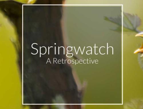 Springwatch 2018 – A Retrospective
