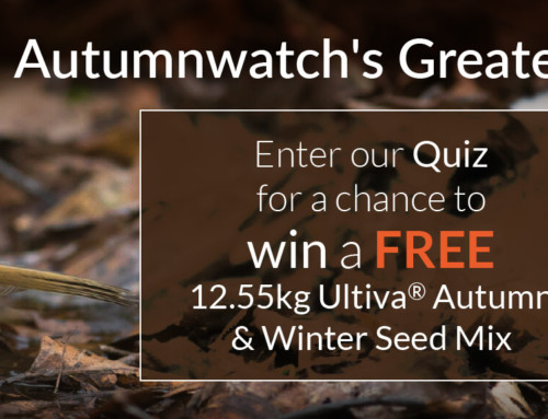 Autumnwatch's Greatest Hits (Quiz)