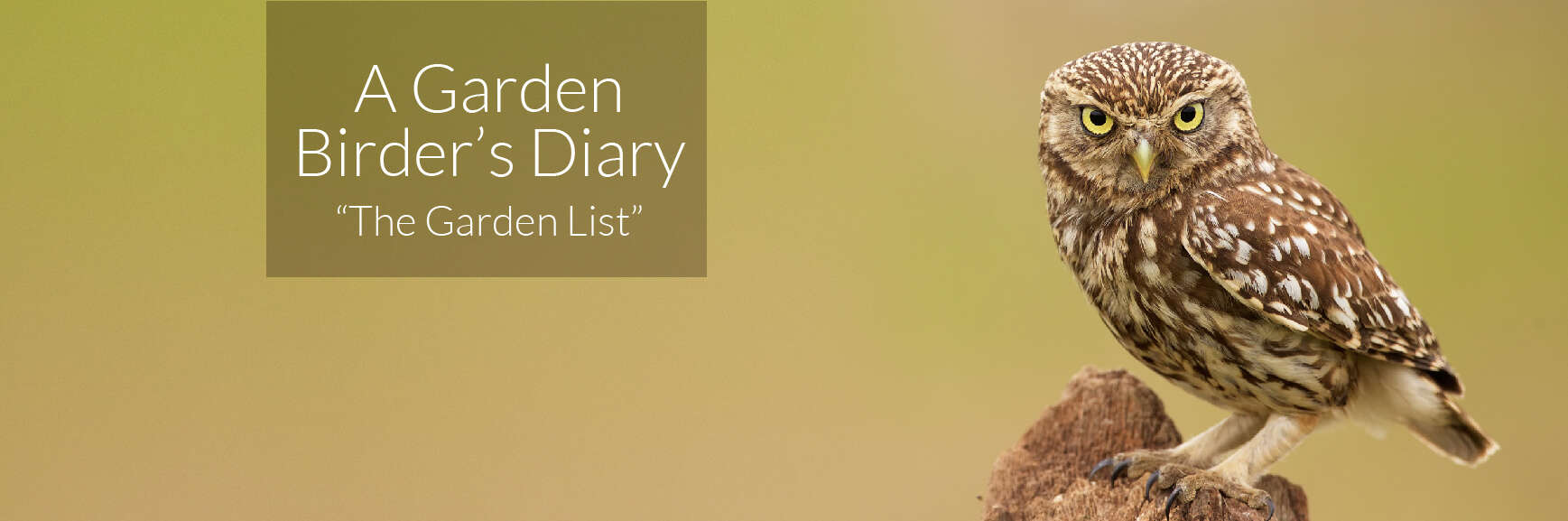 A Garden Birder's Diary – The Garden List