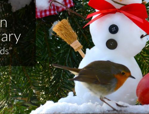 A Garden Birder's Diary – Christmas Birds