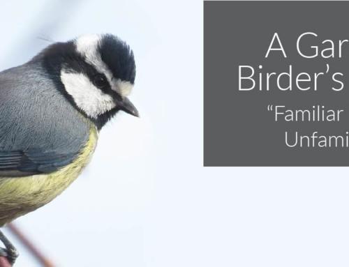 A Garden Birder's Diary – Familiar in the Unfamiliar