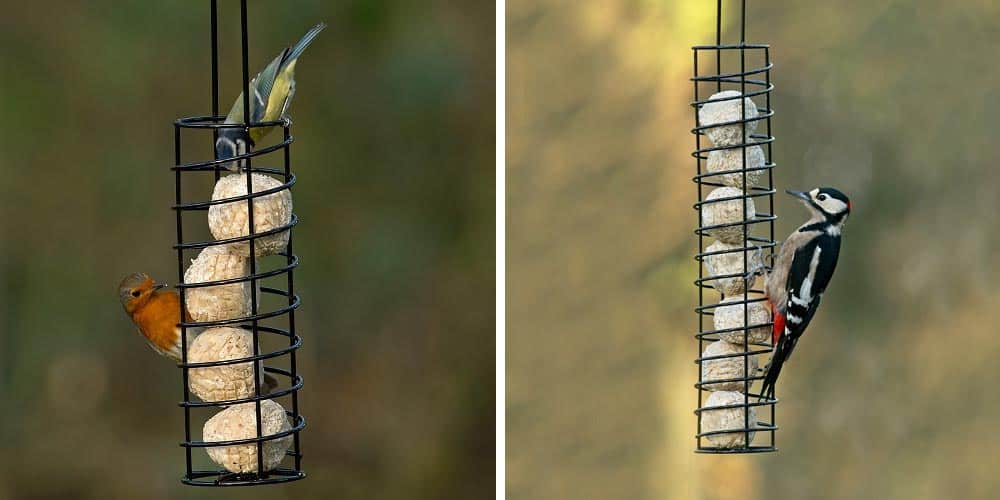 Exclusive Suet Ball Feeder
