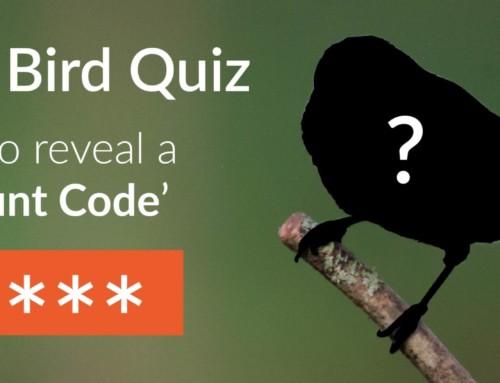 Guess The Bird Quiz