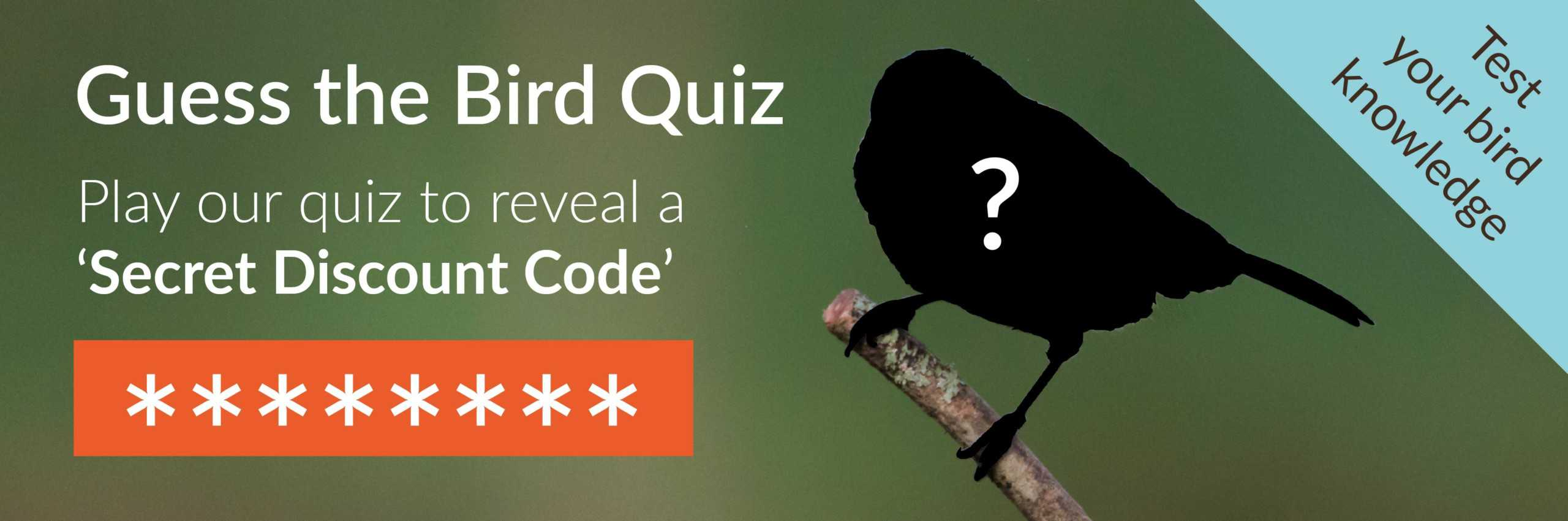 Guess The Bird Quiz