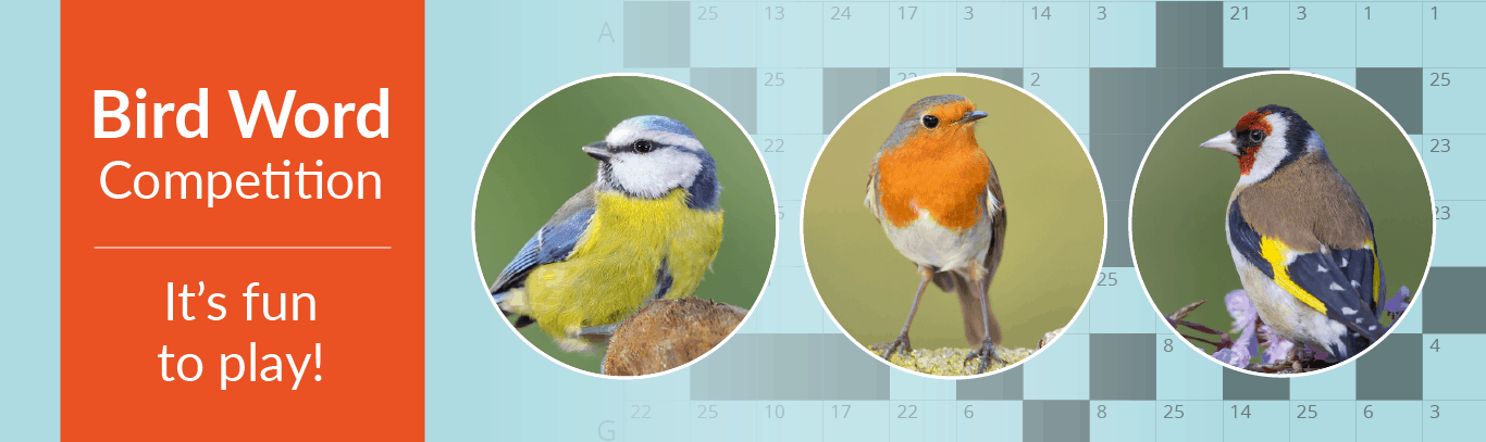 Birdword Summer Quiz (ends 30th September 2020)